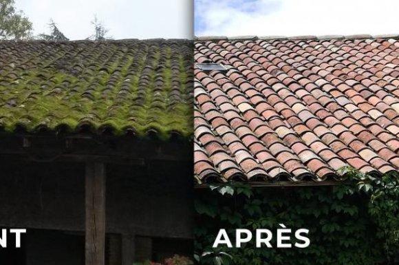 Enlever mousse de son toit à Toulouse